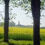 L'église et la commune